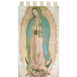 Banner - Our Lady of Guadalupe